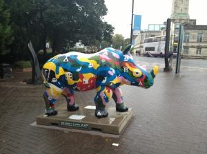 Multi-coloured Go! Rhino