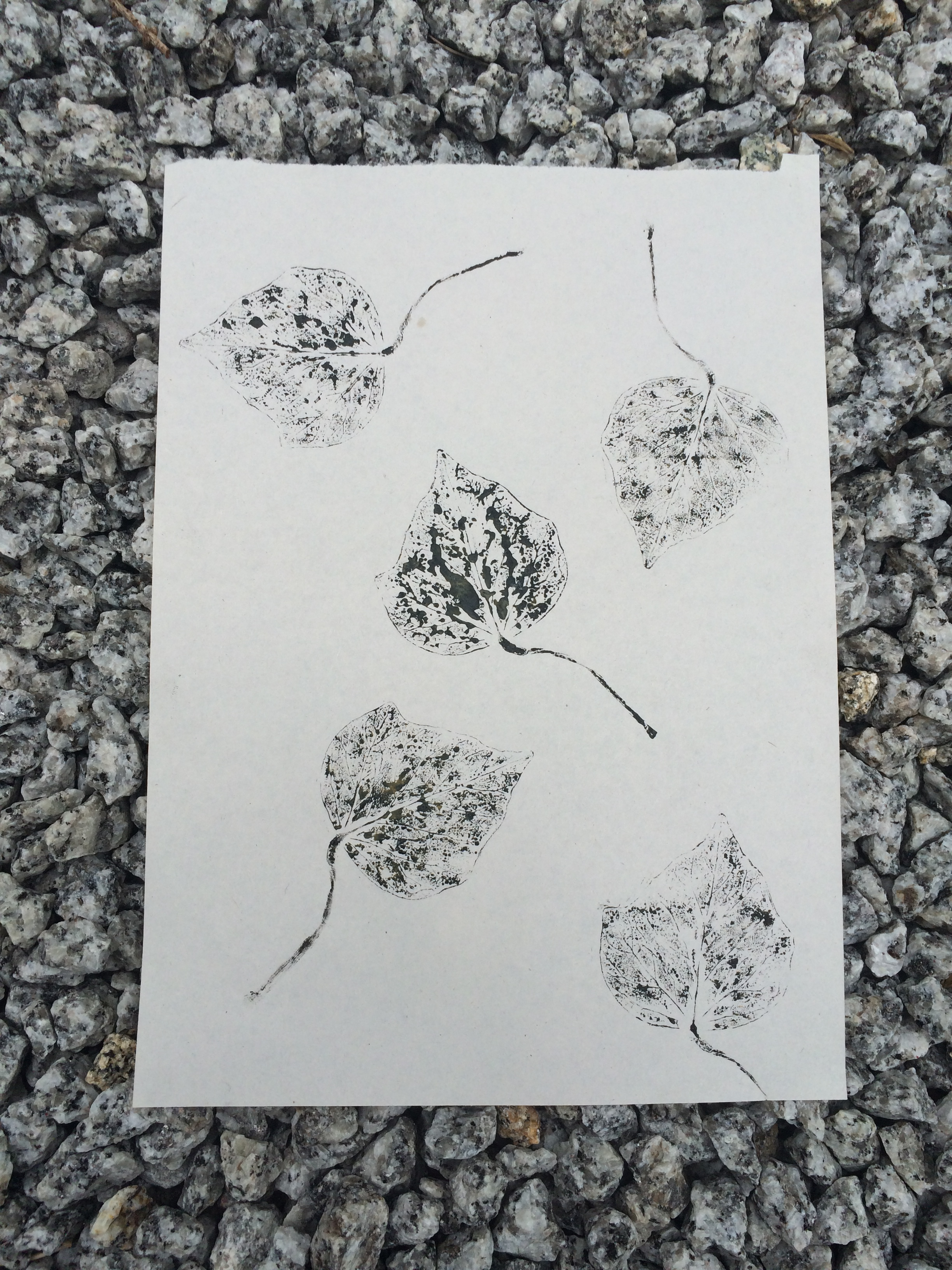 Ink print of several smaller leaves on paper