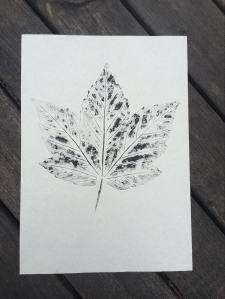 Ink print of a large leaf on paper
